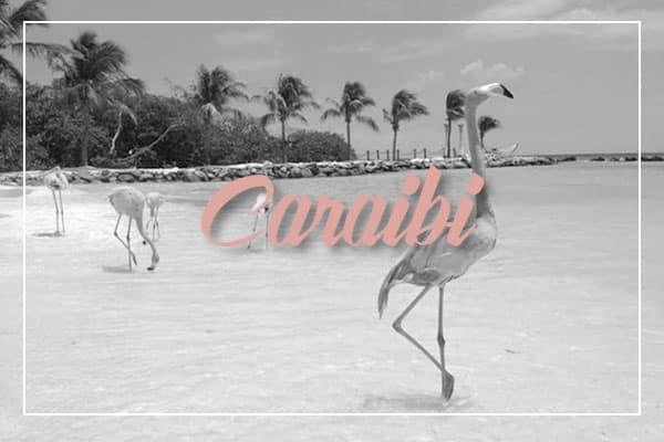 destination-caraibi